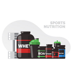 sport and fitness vector image