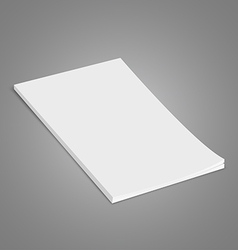 White Brochure vector image vector image