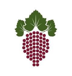 wine grapes wreath template design style design vector image