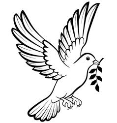 Dove birds logo for peace concept and wedding desi vector