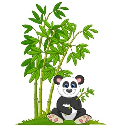 Cartoon panda sitting and eating bamboo vector image