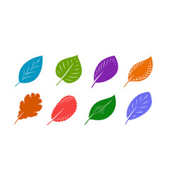 decorative leaves set autumn nature concept vector image