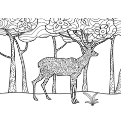 Deer coloring book for adults raster vector