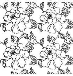 flower monochrome seamless pattern peony or wild vector image