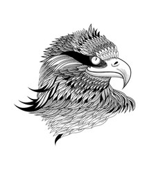 graphical eagles head vector image