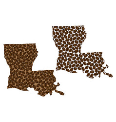 Louisiana - map of coffee bean vector