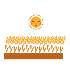 ripe wheat ears growing on field under sun vector image