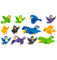 Set bird cartoon character vector