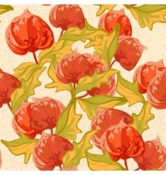 Vintage wallpaper seamless pattern with cape vector image vector image