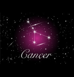 cancer zodiac constellations sign vector image