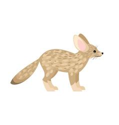 cute little fennec fox vector image