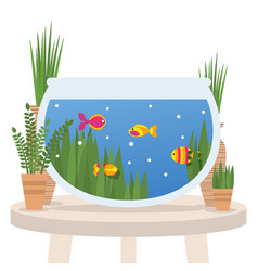 fish swimming in a tabletop aquarium flat style vector image