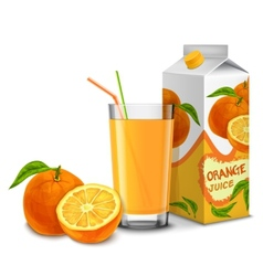 Orange juice set vector image
