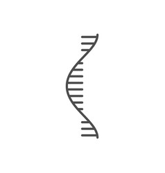 rna related thin line icon vector image