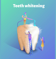 Teeth whitening isometric group of vector