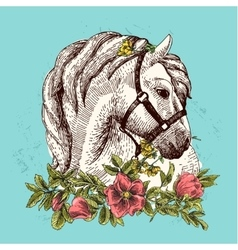 horse with flower vector image