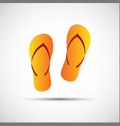 Pair of flip-flops isolated on a white background vector