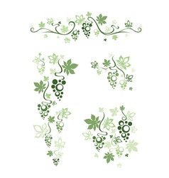 Set of design elements from green grape vector image