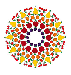 colored circular fruity mandala vector image