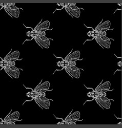 Fly grey on black seamless pattern vector