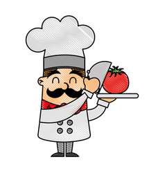 Funny chef with tomato avatar character vector