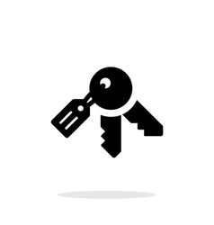 Keys icon on white background vector image