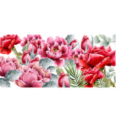 rose flowers background watercolor spring summer vector image