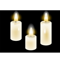 White candles vector