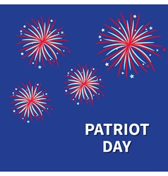 Patriot day Fireworks night sky Star and strip vector image