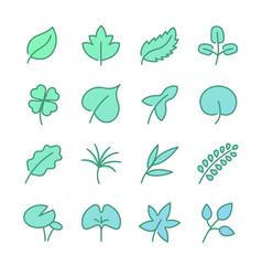leaf icon set vector image