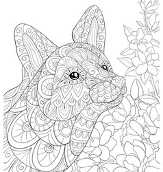 adult coloring bookpage a cute fox image for vector image