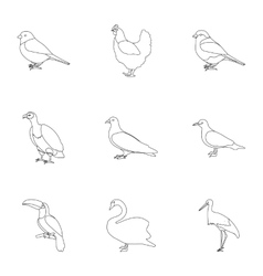 Outline Peacock Vector Images over 150