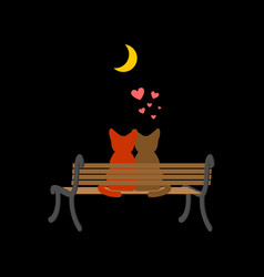 cat lovers sitting on bench pet romantic date vector image