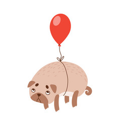 Cute pug dog flying with red balloon funny vector