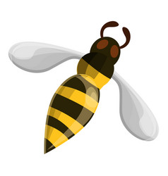 flying wasp icon cartoon style vector image