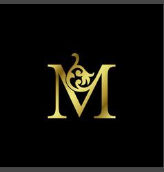 Gold luxury letter m ornament logo alphabet vector