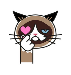 grumpy cat loves k pop vector image