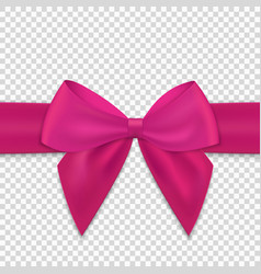 realistic bow and ribbon isolated vector image
