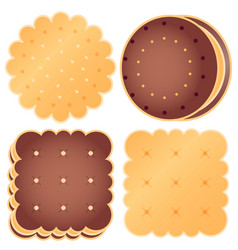 Set of cute choclate cookies vector