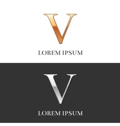 5 V Luxury Gold and Silver Roman numerals sign vector image