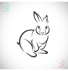 Rabbits vector image
