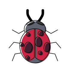 bug icon image vector image