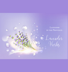 lavender cosmetic label vector image