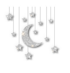 ramadan silver decoration isolated on white vector image