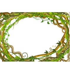 Twisted wild lianas branches frame vector