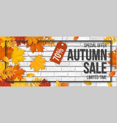 autumn sale fallen maple leaves frame white brick vector image