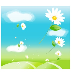 Daisy flowers in air vector