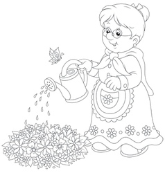 Granny watering flowers vector image