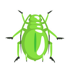 Green longhorn beetle colorful cartoon character vector