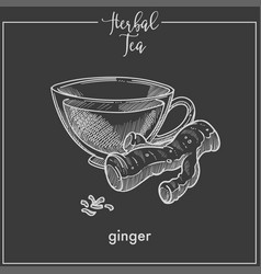 healthy herbal tea with ginger root in glass cup vector image
